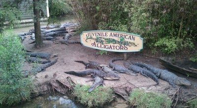 Photo of Other Venue Alligator Adventure at 4604 Highway 17 S, North Myrtle Beach, SC 29582