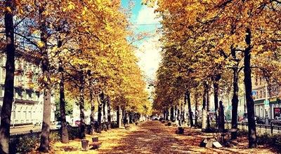 Photo of Park Аллея на Комсомольском проспекте at Комсомольский Просп., Пермь, Russia