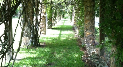 Photo of Park Ravine Gardens State Park at 1600 Twigg St, Palatka, FL 32177, United States