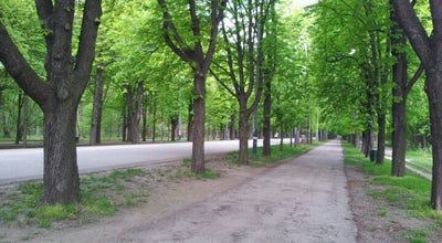 Photo of Trail Prater Hauptallee at Prater Hauptallee, Wien 1020, Austria