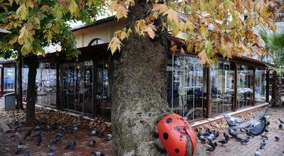 Photo of Cafe Değirmen Cafe at Deliloğlu Caddesi, Kocaeli 41950, Turkey