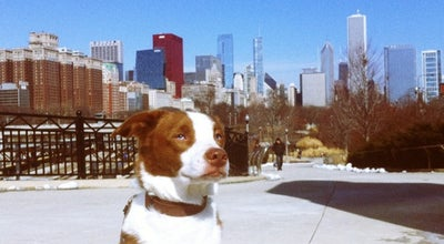 Photo of Dog Run Grant Bark Park at 1000 S. Columbus Dr., Chicago, IL 60605, United States