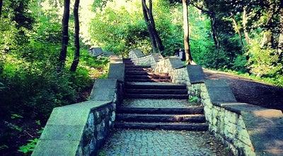 Photo of Park Volkspark Friedrichshain at Landsberger Allee, Berlin 10249, Germany
