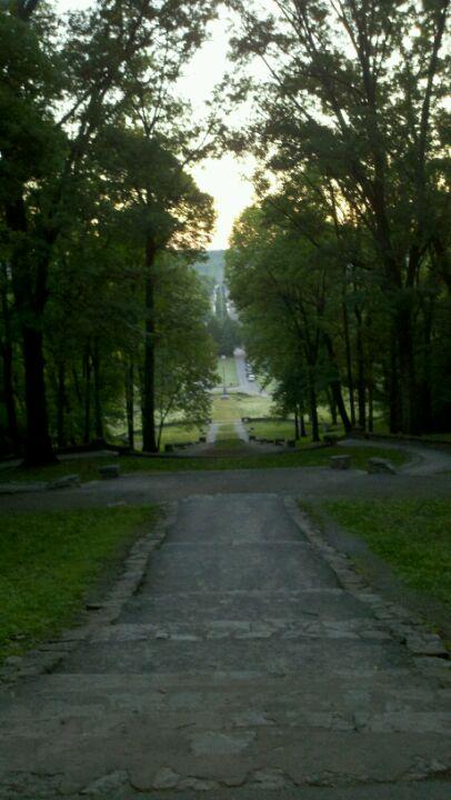Percy Priest Dam Dog Park