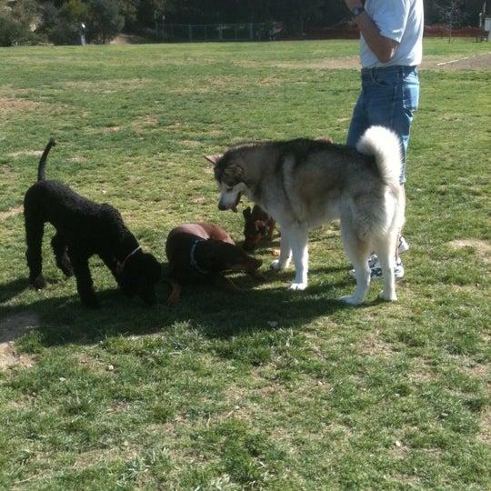 Photo taken at Laguna Canyon Dog Park by Donna C. on 2/21/2012