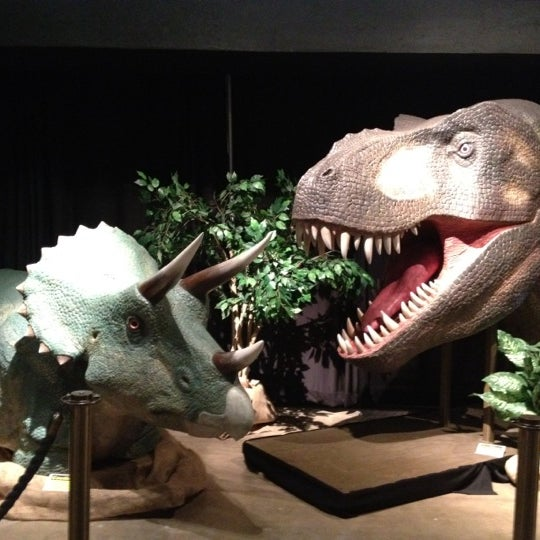 Children S Museum Of Natural Science Sugar Land