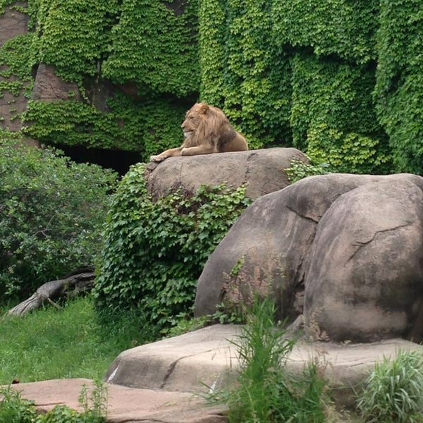 Photo taken at Lincoln Park Zoo by Jess on 6/10/2013