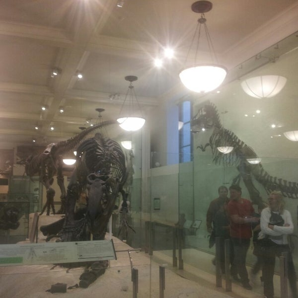 Photo taken at David H. Koch Dinosaur Wing by Rachel V. on 11/5/2013