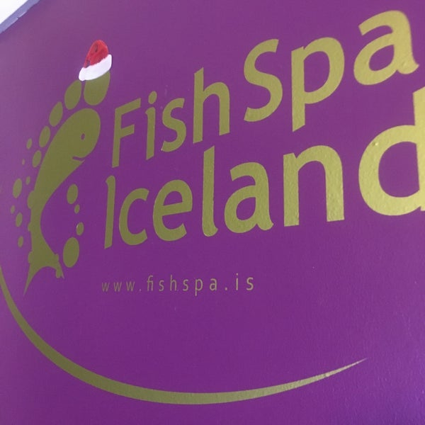 Fish spa iceland spa for Fish pedicure nyc