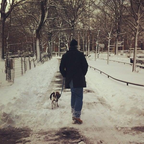 Photo taken at Marcus Garvey Park - Dog Run by Ana G. on 2/9/2013