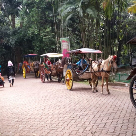 Photo taken at Kebun Binatang Ragunan by Sunarto H. on 4/18/2014