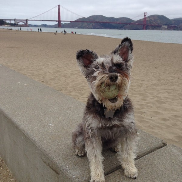 Photo taken at Crissy Field by Richard B. on 7/12/2014