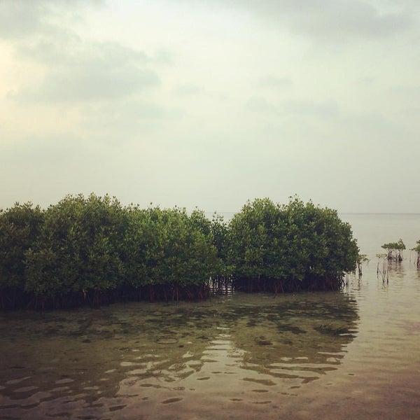 Photo taken at Pulau Pramuka by Endro N. on 9/3/2016