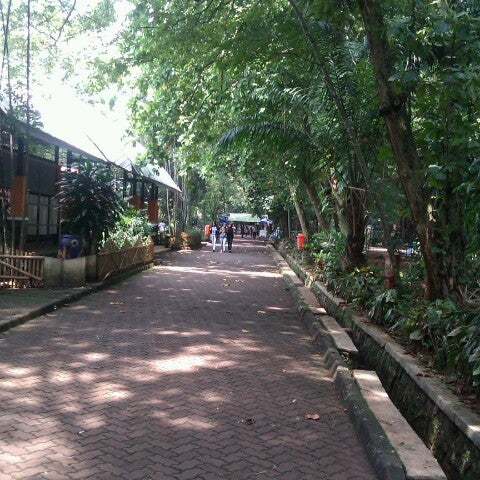 Photo taken at Kebun Binatang Ragunan by Dwi P. on 12/1/2012