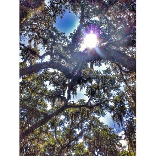 Photo taken at Palatka, FL by Elizabeth M. on 7/27/2014