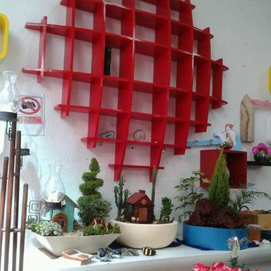 Photos at mercado de muebles crea coyac n distrito for Crea muebles