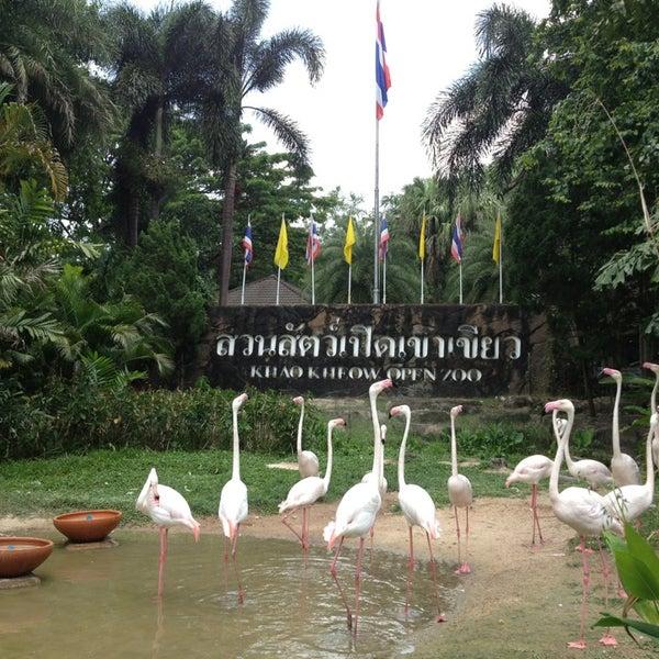Photo taken at สวนสัตว์เปิดเขาเขียว (Khao Kheow Open Zoo) by พสธร ว. on 3/31/2013