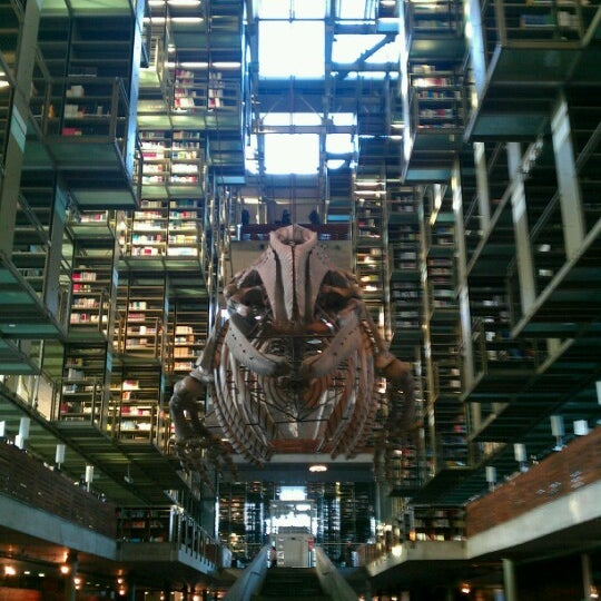 Photo taken at Biblioteca Vasconcelos by Orlando R. on 2/3/2013