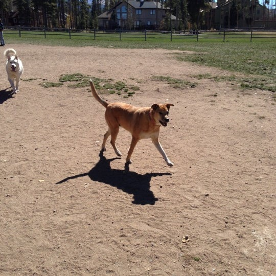 Photo taken at Carter Dog Park by Courtney H. on 10/7/2012
