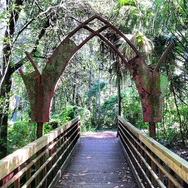 Best Dog Parks Tampa Fl