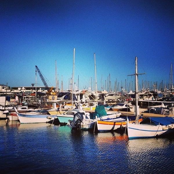 Port de cannes le vieux port cannes provence alpes c te d 39 azur - Port de cannes capitainerie ...