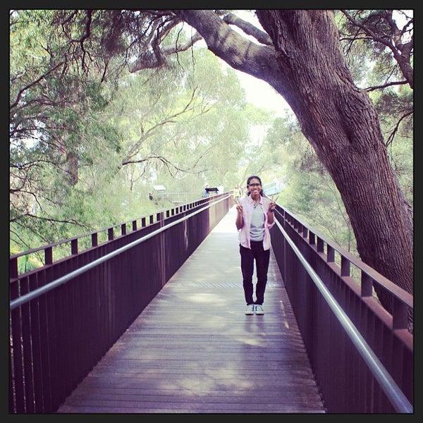 Photo taken at Kings Park and Botanic Garden by Irsani Kamila W. on 2/15/2013