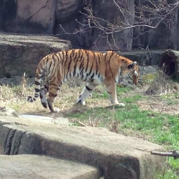Photo taken at Lincoln Park Zoo by Hailey F. on 4/28/2013