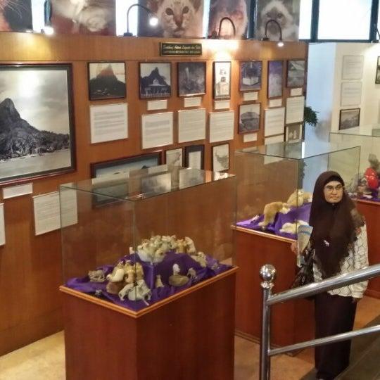 Photo taken at Cat Museum (Muzium Kucing) by amj on 2/1/2015