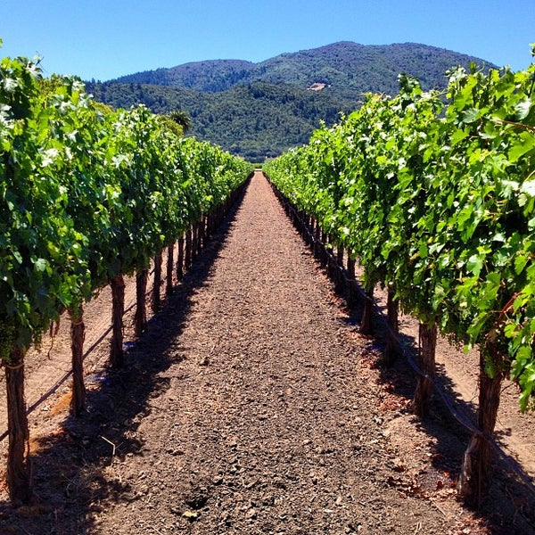 Where's Good? Holiday and vacation recommendations for Napa Valley, United States. What's good to see, when's good to go and how's best to get there.