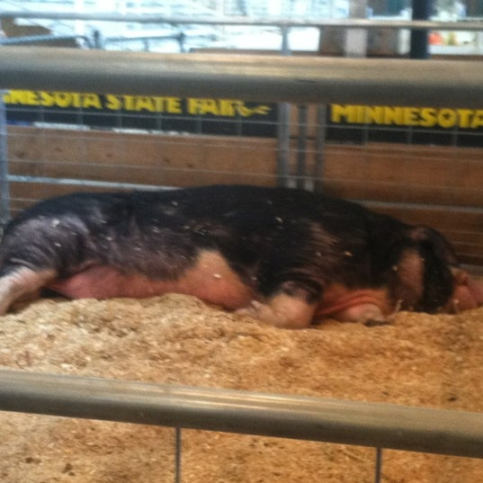 Photo taken at Swine Barn by Jennica B. on 8/31/2012