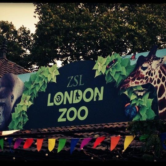 Zoo In Londra, Greater London