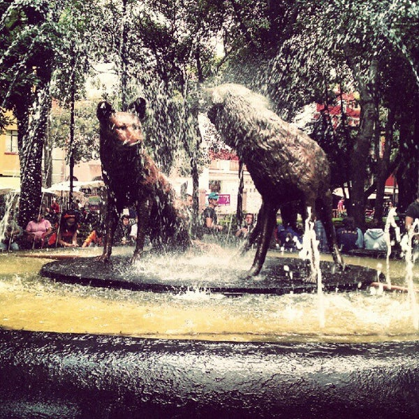 Photo taken at Jardín Hidalgo by Seday M. on 10/1/2012
