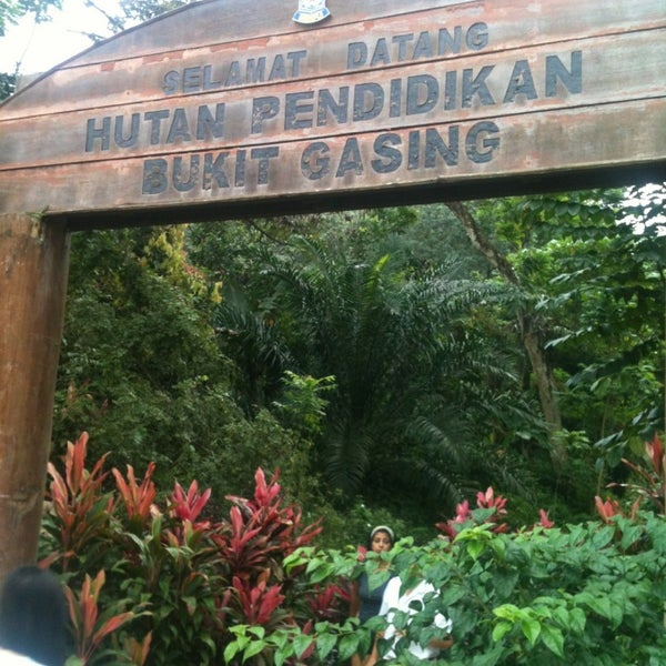 Bukit Gasing (Gasing Hill) - 66 tips
