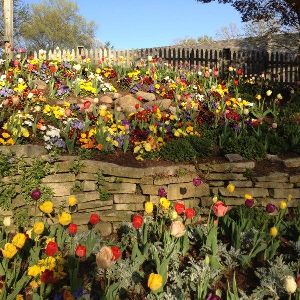 Photo taken at Busch Gardens Williamsburg by Jennifer T. on 4/14/2013