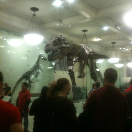 Photo taken at David H. Koch Dinosaur Wing by Karin N. on 11/24/2012