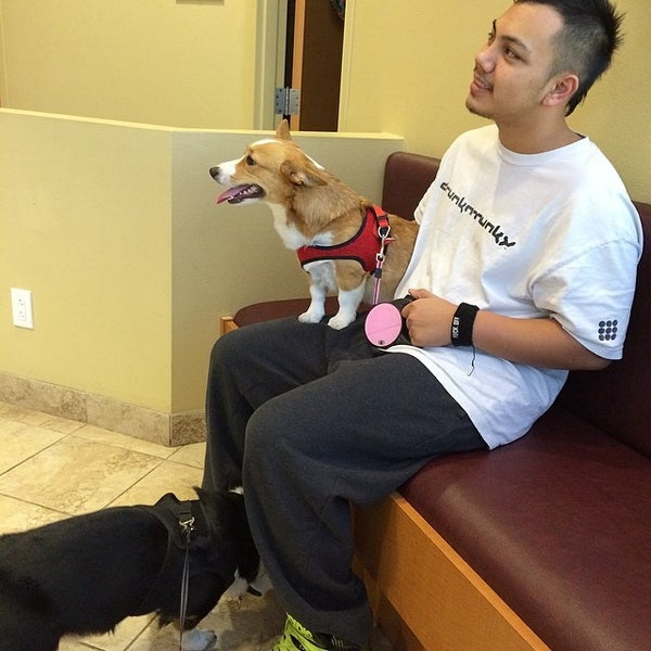 Photo taken at Aloha Animal Hospital by Rusty F. on 3/7/2014