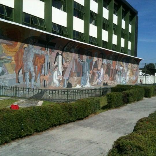Preparatoria 1 adolfo lopez mateos 7 tips de 366 visitantes for Mural prepa 1 uaemex