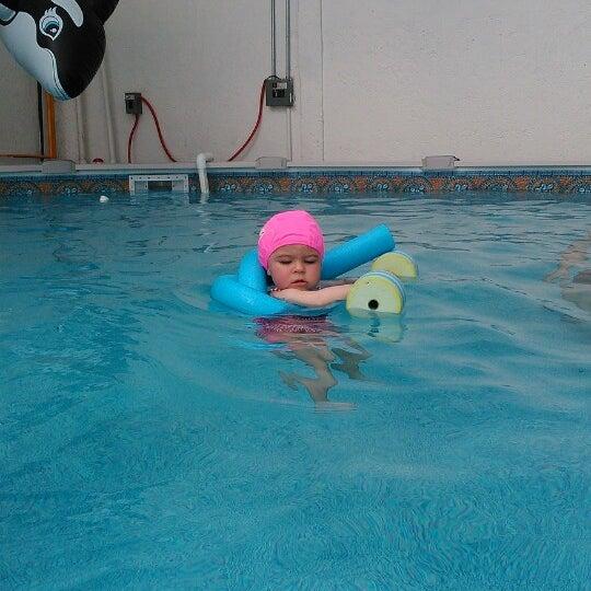 Agua viva xoco ciudad de m xico distrito federal for Clases de natacion df