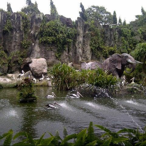 Photo taken at Kebun Binatang Ragunan by Martha L. on 6/2/2013