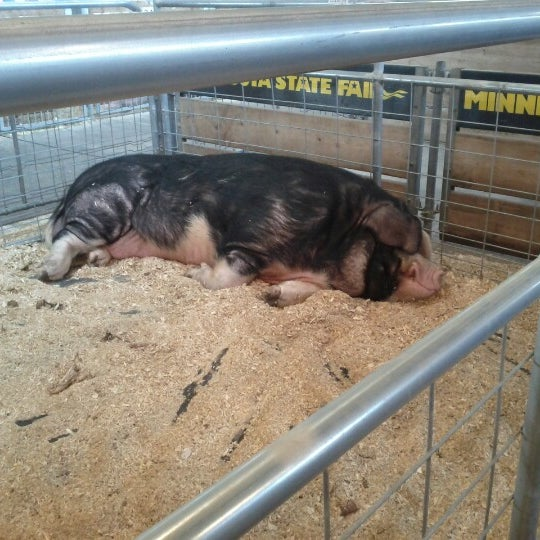 Photo taken at Swine Barn by Ivan K. on 9/2/2012
