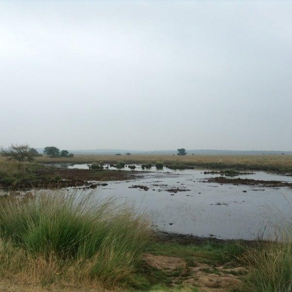 Photo taken at Nationaal Park De Hoge Veluwe by Arno V. on 9/7/2013