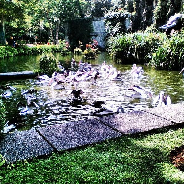 Photo taken at Kebun Binatang Ragunan by Ifal R. on 4/16/2013