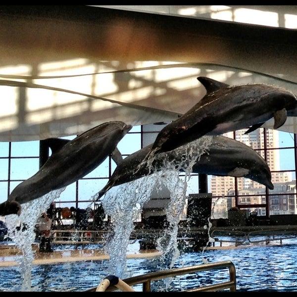 Photo taken at National Aquarium by Wade P. on 7/6/2013