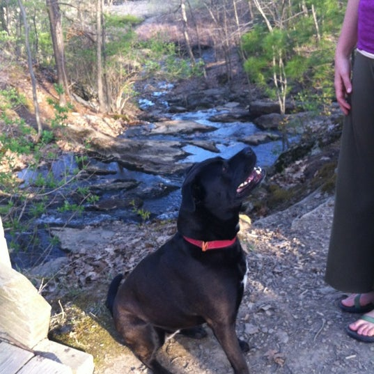Photo taken at Jewell Falls by Stacy K. on 4/16/2012