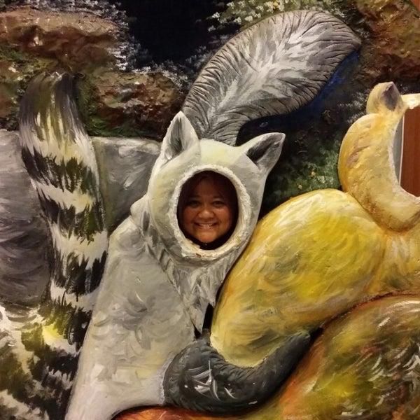 Photo taken at Cat Museum (Muzium Kucing) by Anida A. on 10/26/2014