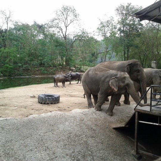 Photo taken at Khao Kheow Open Zoo by Sergey K. on 2/10/2013