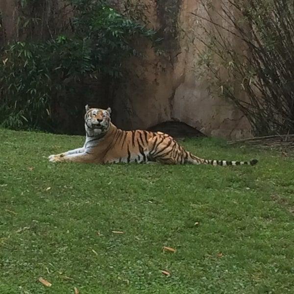 Photo taken at Maharajah Jungle Trek by John P. on 3/6/2015