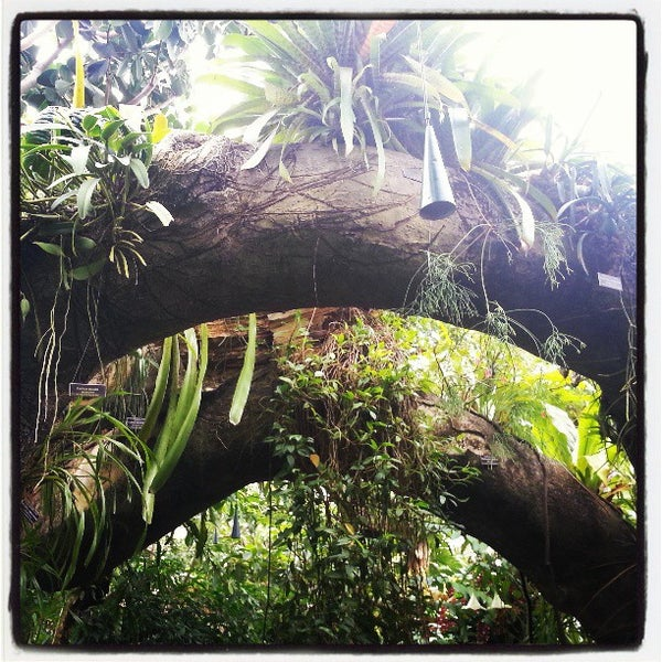 Photo taken at Enid A. Haupt Conservatory by Landes T. on 3/7/2013