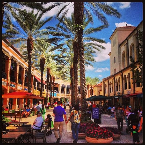 City Cellar West Palm Beach Fl