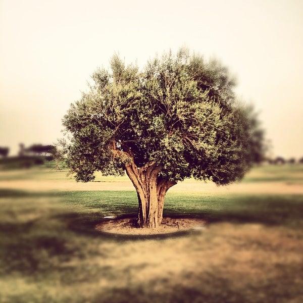Photo taken at Aspire Park | حديقة اسباير by Saoud A. on 6/16/2012